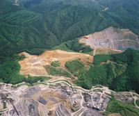 ㉘既存工場と国有林